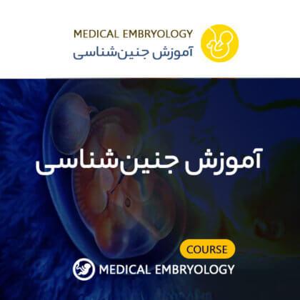 آموزش جنین شناسی
